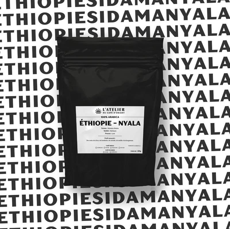 SIDAMA NYALA - ETHIOPIE