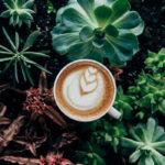 le-scoring-cafe-d-oriant-torrefacteur-lorient-bretagne