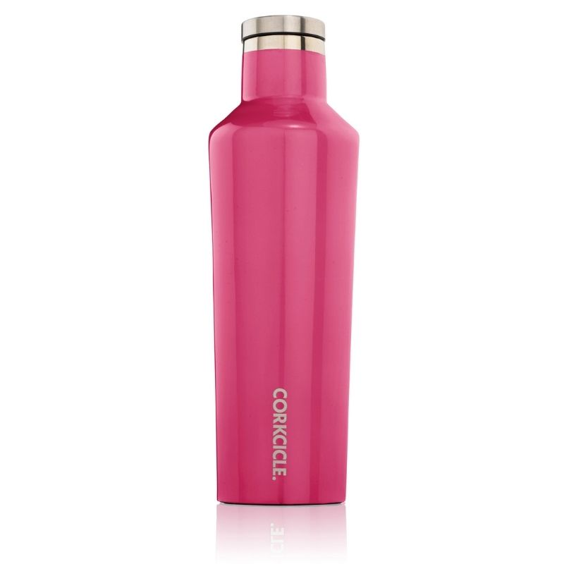 Canteen_Gloss_Pink_corkcicle